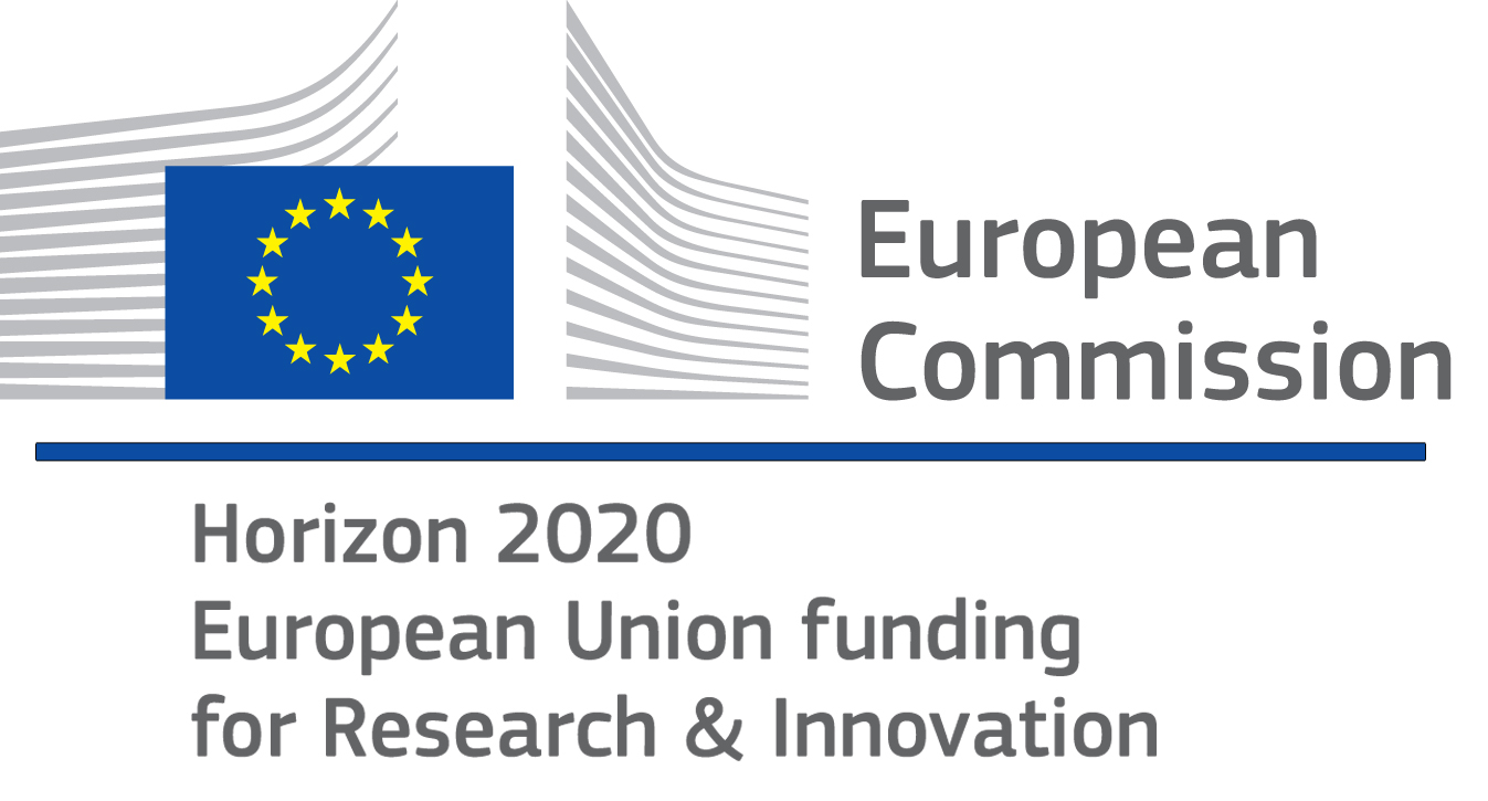 EU Horizon 2020 - FCH2-RIA Research and Innovation action: Fuel cell systems for the propulsion of aerial passenger vehicle
